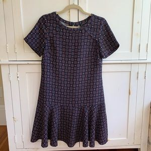 Banana Republic Drop Waist Mini Dress